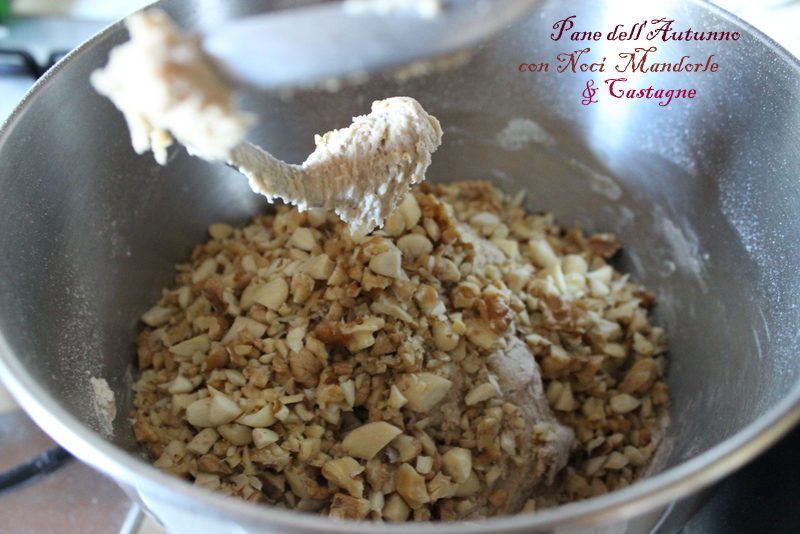 pane ai cereali,noci,mandorle e castagne