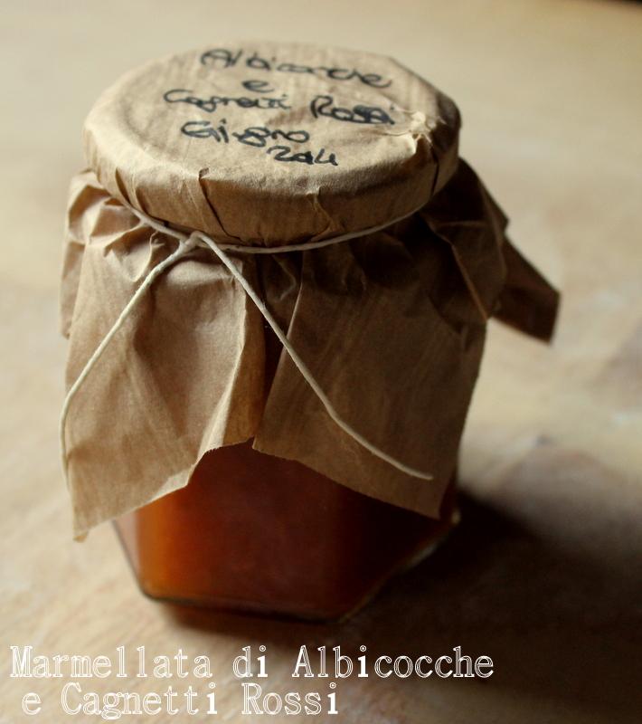 marmellata albicocche e cagnetti rossi